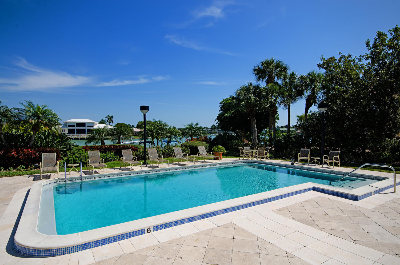 3100 Gulf Shore Blvd N 304-large-015-Pool-1500x994-72dpi